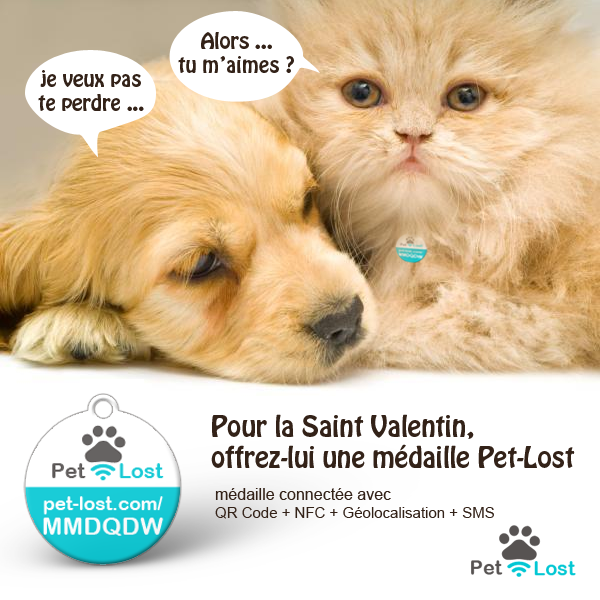 Pet-Lost fête la Saint Valentin 2018